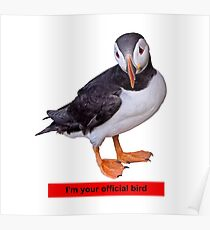I'm your official bird Poster