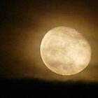 Halo Moon by © Loree McComb