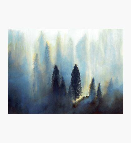 Forêt bleue Impression photo