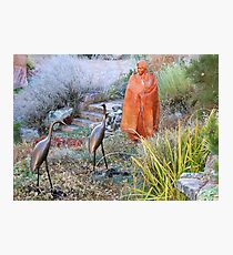 Garden Sculptures on Canyon Road Photographic Print