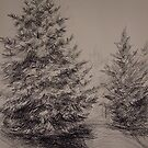 Two Spruces by Anthropolog