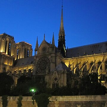Notre Dame Cathedral Paris by Johnhalifax