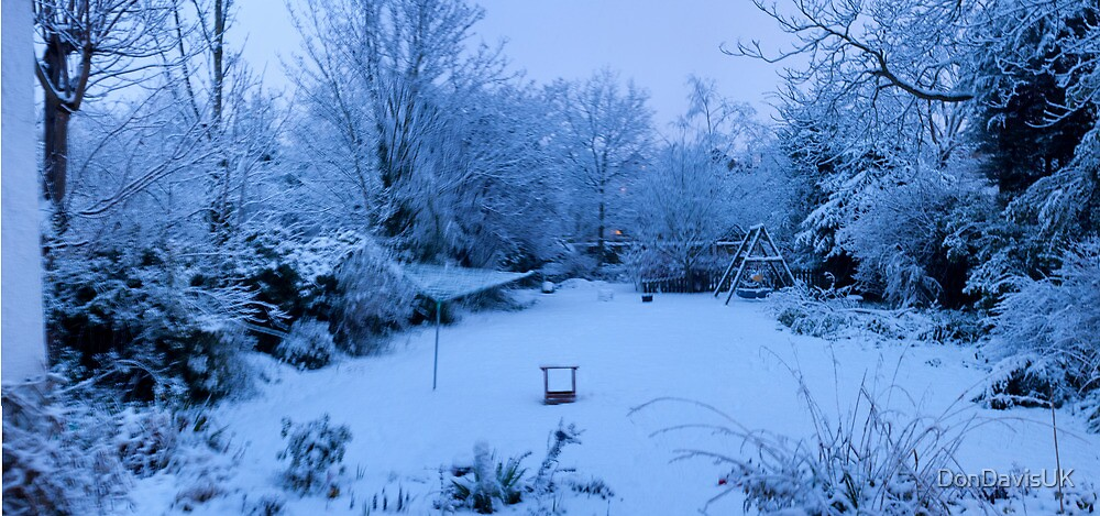 Snowy Blanket over my Back Garden: Pano 5 Stitch  by DonDavisUK