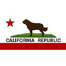 California Newfie Flag by Christine Mullis