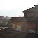 Rooftops of Kathmandu - Nepal by Leesa Habener