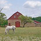 Stone Barn - Silverdale, Kansas - USA by Kent Burton