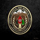 Special Operations Joint Task Force - Afghanistan -  NSOCC-A/SOJTF-A Patch over Black Velvet by Serge Averbukh