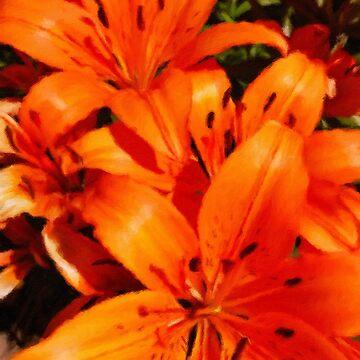 Summer Orange Lillies  by Rasendyll