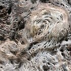 Velvet bark by cuprum