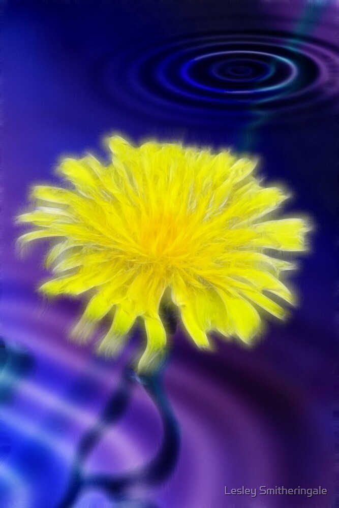 Submerged Dreamy Dandelion by Lesley Smitheringale