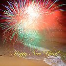 Happy New Year By The Seashore In Dreamland by hurmerinta