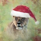 Hmm.....What's for Christmas? by Lyn Darlington