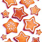 Iced Star Cookies by Paigekotalik