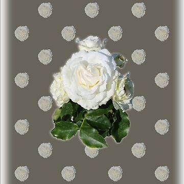 White Rose by STHogan