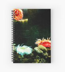 A Feel for the Ocean Spiral Notebook