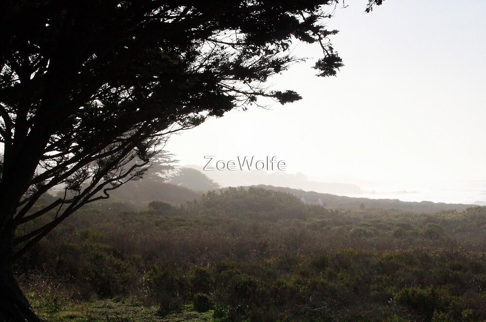 vista by ZoeWolfe