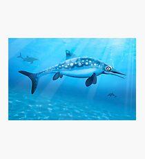 Ophthalmosaurus - Extinct Marine Reptile Photographic Print