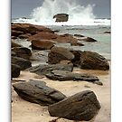 Redgate Rocks...! (framed) by thorpey