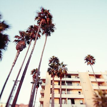 Venice Beach Place by CaliforniaPhoto