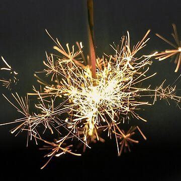 sparkler by fourretout