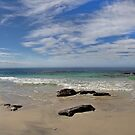 Beach panorama by Richard Majlinder