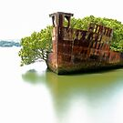 Mariner's Cove Shipwreck Homebush Bay - Colour by DavidIori
