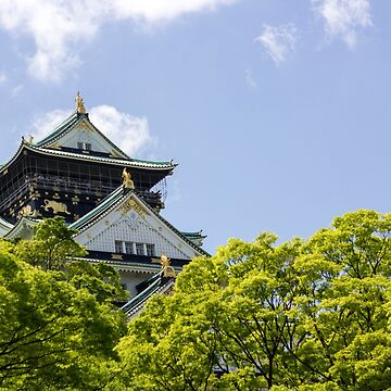 Osaka Castle by geep44