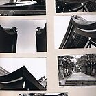 My favourite Japanese Building 1974; Ise Temple/Shinto by chrythmnove