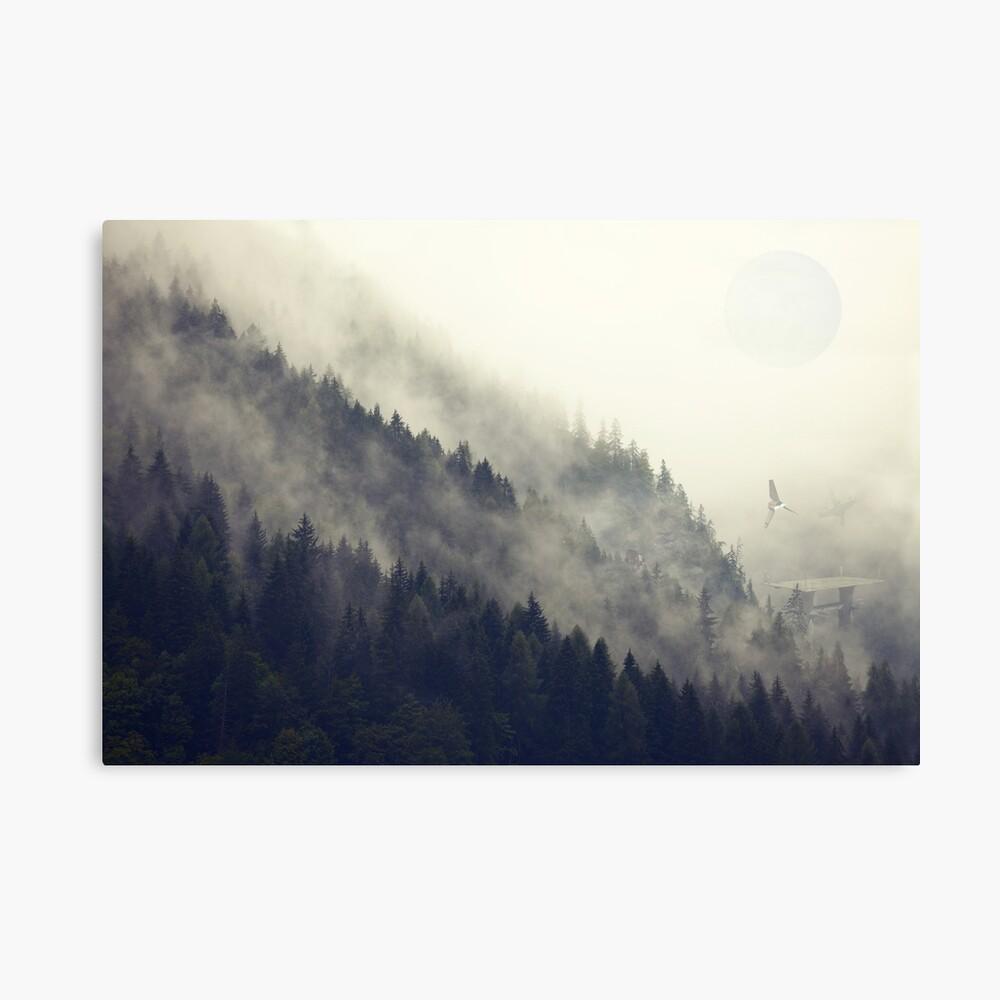 Forest Moon Lienzo