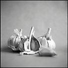 three by Sue Hammond