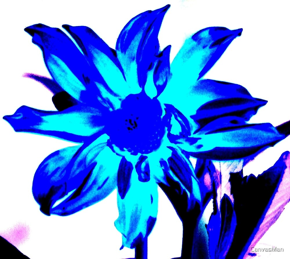 The Blue Flower by CanvasMan