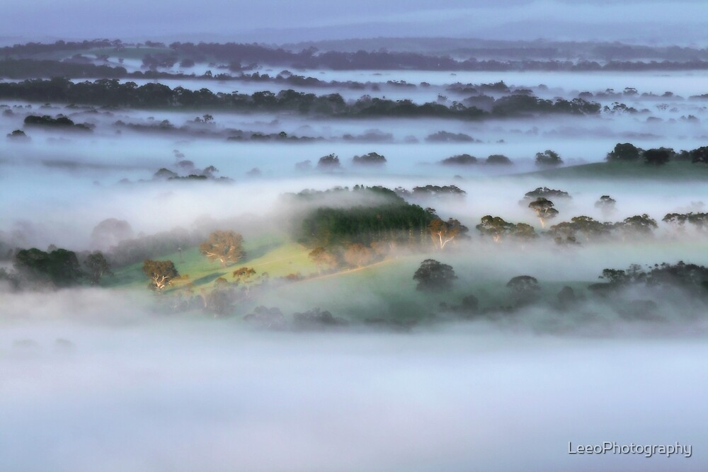 ~ Dreamy days ~ by LeeoPhotography