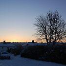 Snowy Sunrise by funkybunch