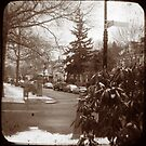 Ditmas Park TTV by andytechie