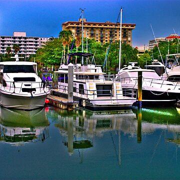 Marina Bay, Sarasota, FL by LudaNayvelt