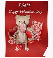 "I Said ""Happy Valentine's Day!!!"" Poster"