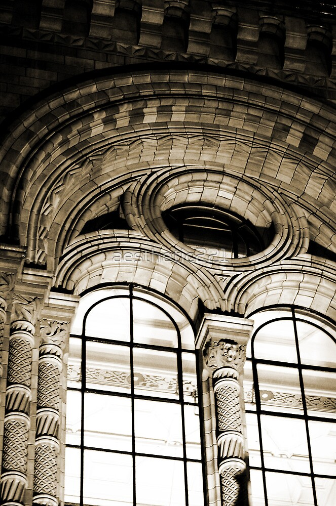 Natural History Museum by aesthetic221