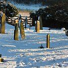 Gravestones 1 by SWEEPER