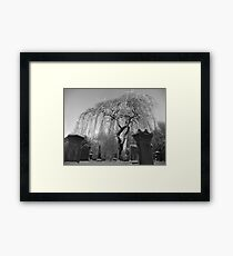 ...and the weeping stopped. Framed Print