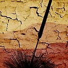This is a Sunburnt Country by Leeo