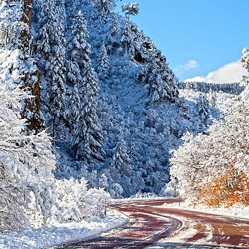 Wintry Road. by valentina9