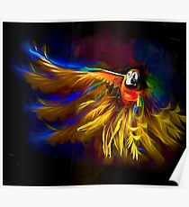 The Mad Macaw Poster