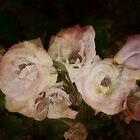 « Bouquet de roses » par Elaine Teague