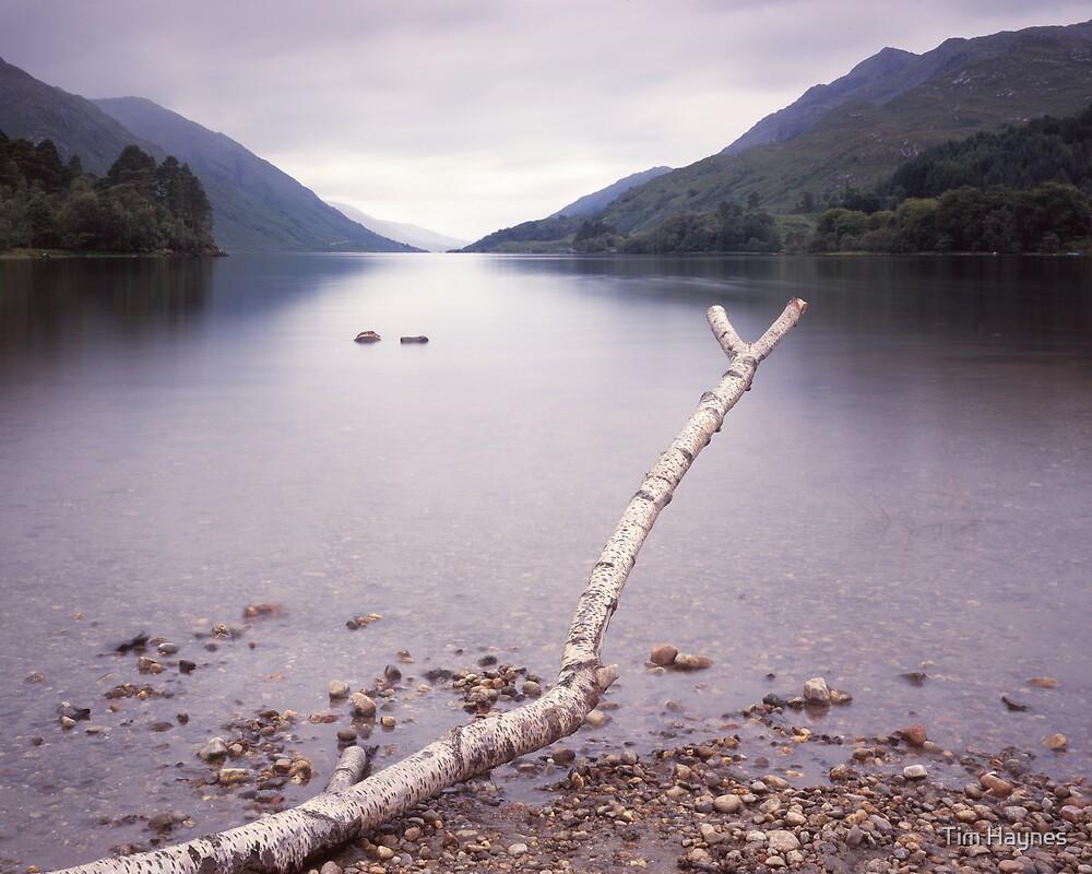 Loch Shiel by Tim Haynes