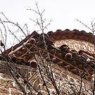 Forgotten Fruit - Pomegranates and Byzantine Church Fabulous Brickwork by Georgia Mizuleva