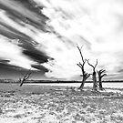 Waikerie, South Australia by Roberts Birze