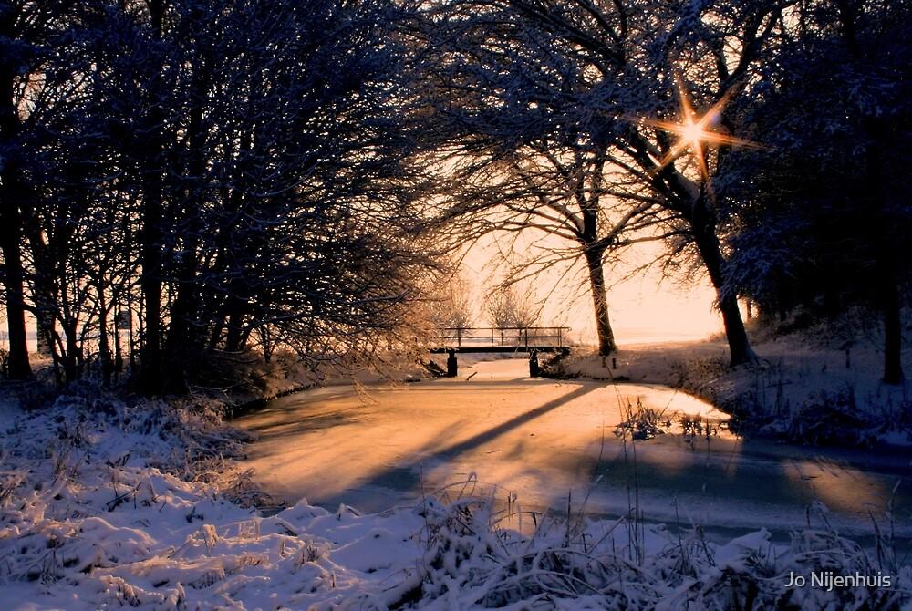A Winter Star by Jo Nijenhuis