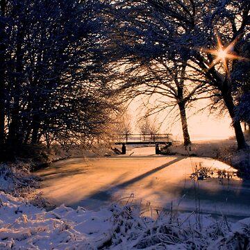 A Winter Star by Jokus