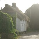 Dorset cottages by BronReid