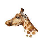 Portrait of a Giraffe by artbywilf